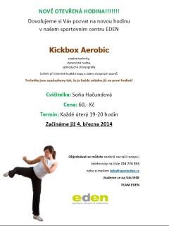 Kickboxaerobic2